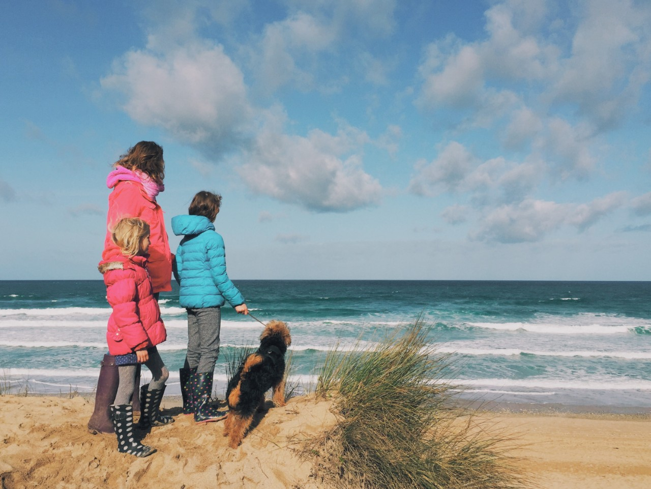 Dog-friendly eats within walkies distance